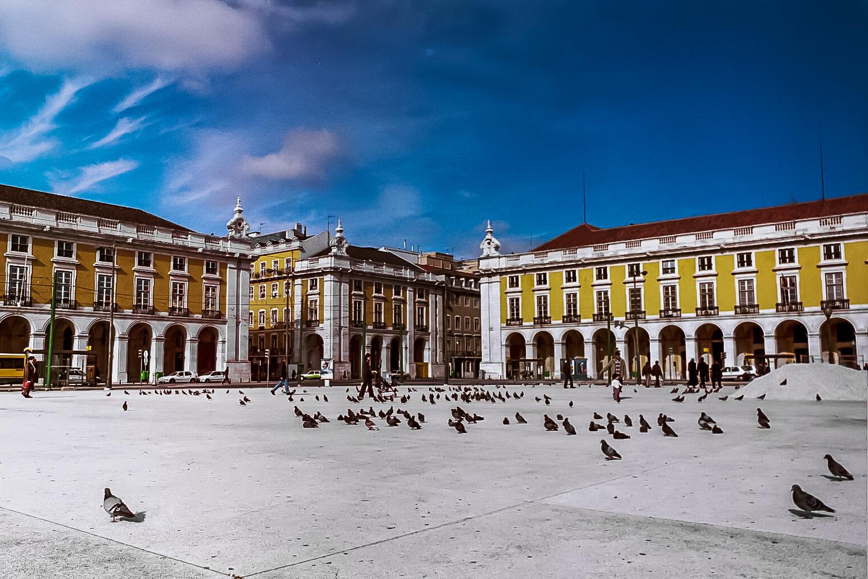 Lisbon, Portugal, Birds in the Square